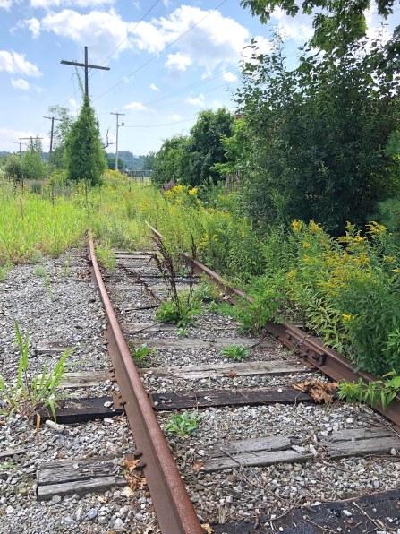 Tracksaugust2